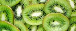 fresh and new career experience fresh kiwi fruit